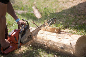 branch cutting with a power saw